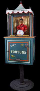 Gypsy Grandma - Crystal Ball Gazer the Fortune Teller