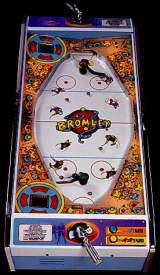 Roller Hockey the Coin-op Misc. Game