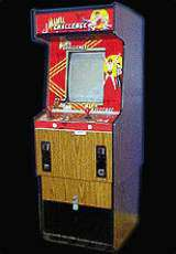Mania Challenge the Arcade Video Game