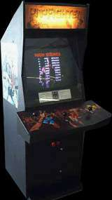 Pit-Fighter the Arcade Video Game