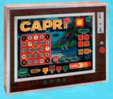 Capri the Coin-op Misc. Game