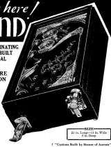 Baby Leland the Coin-op Pinball