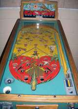 Big Game the Coin-op Pinball