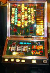 Soccer Crazy the  Fruit Machine