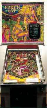 Harlem Cat the Pinball