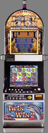 Twin Win 2 [Video Reel Touch Bingo] the  Slot Machine