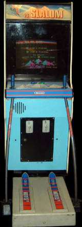 Vs. Slalom the Arcade Video game
