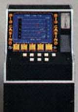 Big Casino [Counter model] the Arcade Video Game PCB