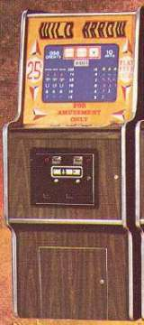 Wild Arrow the  Arcade Video Game