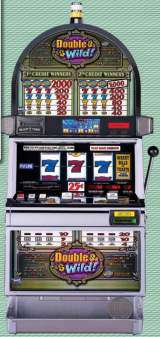 Double Wild! the Slot Machine