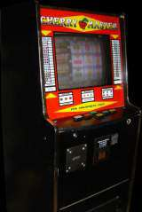 Betstar betting site