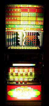 Esprit [5-Reel model] the  Slot Machine