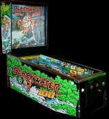 Blackwater 100 [Model 0H07] the  Pinball