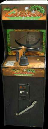 Crossbow the Arcade Video Game