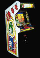 Dig Dug the  Arcade Video Game