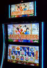 Asian Beauties the  Slot Machine