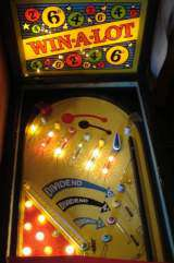 Win-A-Lot the  Pinball