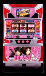 Taiho Shichauzo the  Slot Machine