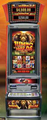 Jumbo Wild [Sweet Zone] [Premium Plus] the  Slot Machine