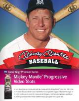 Goodies for Mickey Mantle Baseball