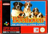 Goodies for Beethoven - The Ultimate Canine Caper! [Model SNSP-2V-EUR]