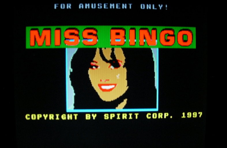 Miss Bingo screenshot