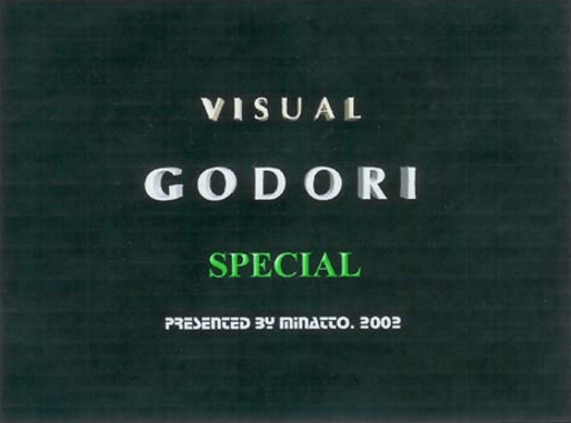 Visual Godori Special screenshot