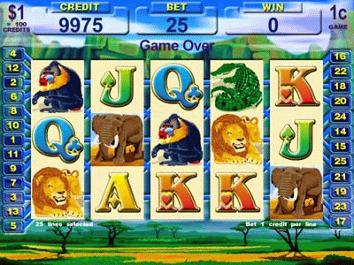 Elephant King II screenshot