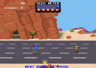 Road Runner screenshot