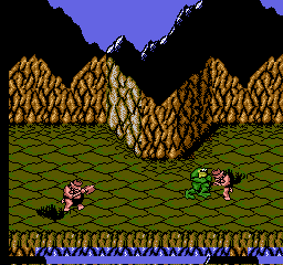 Battletoads [Model NES-BT-USA] screenshot