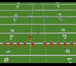 Emmitt Smith Football [Model SNS-AESE-USA] screenshot