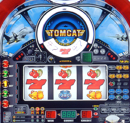 Tomcat screenshot